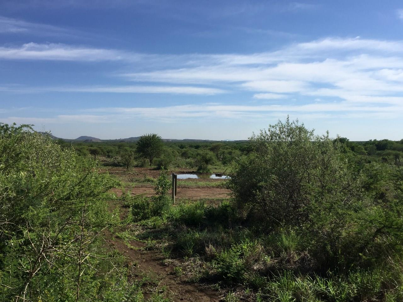 Vacant Land / Plot in Pilanesberg Private Lodge For Sale