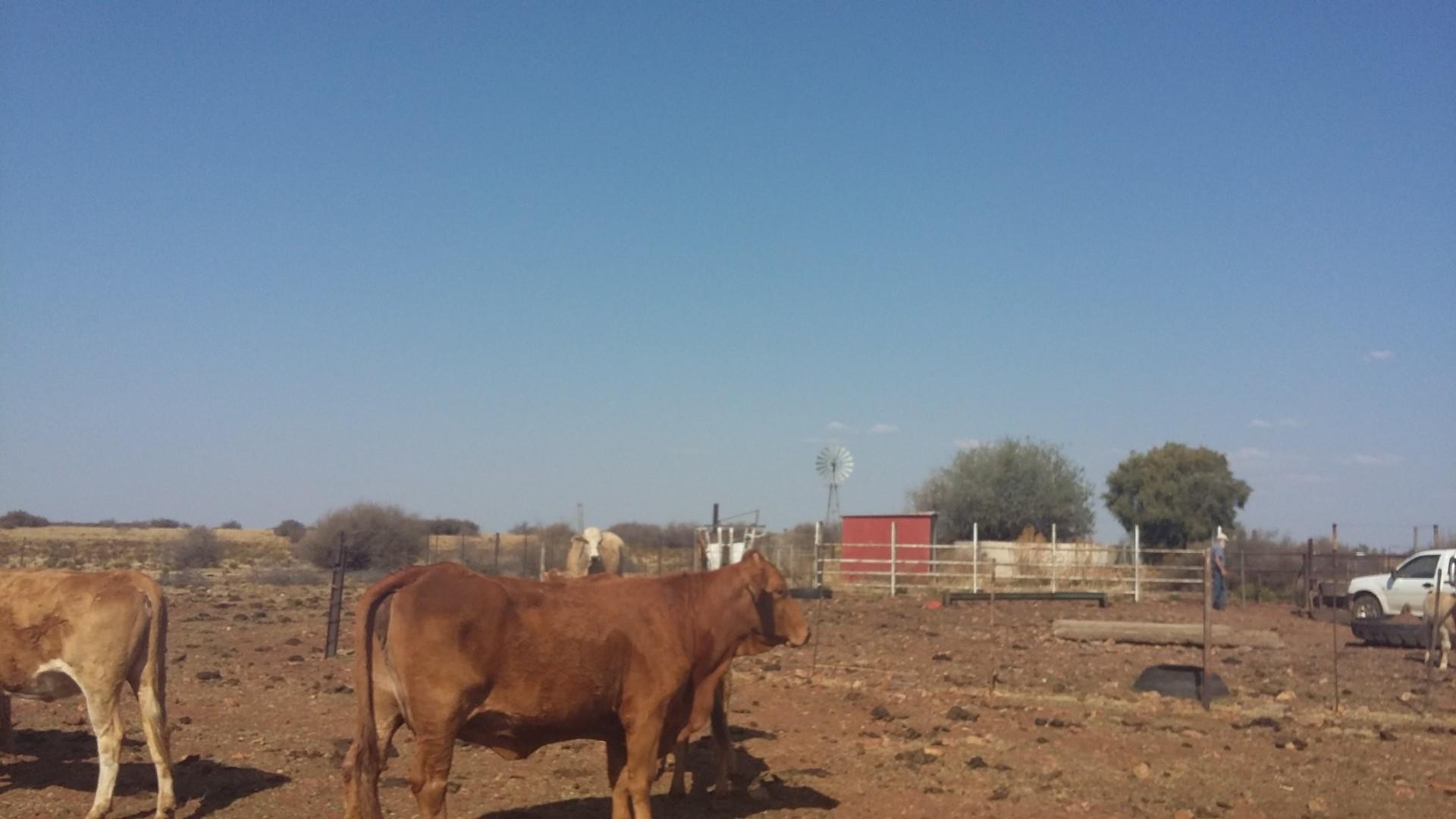 Farm in Kuruman For Sale