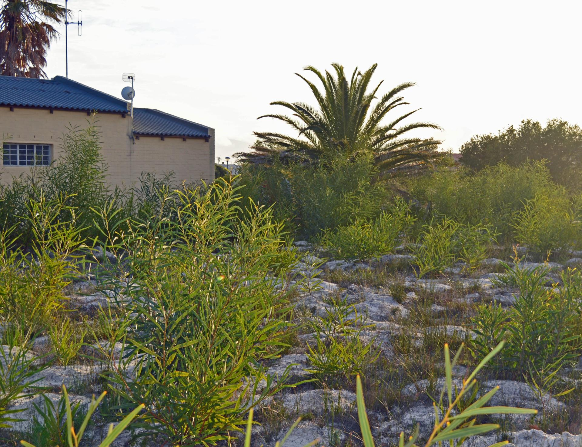 Vacant Land / Plot in Fisherhaven For Sale