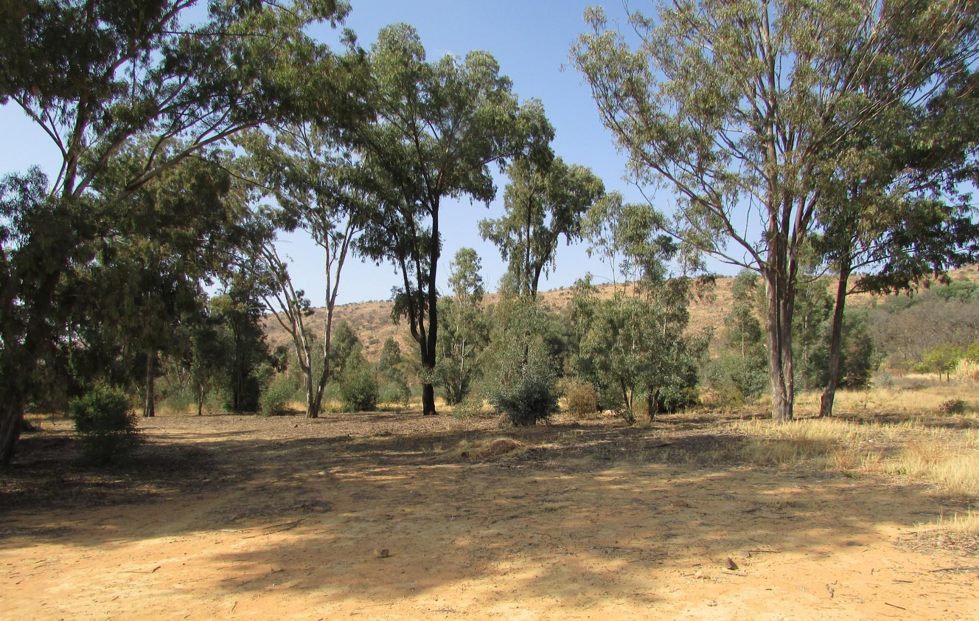 Vacant Land / Plot in Zandfontein A H For Sale