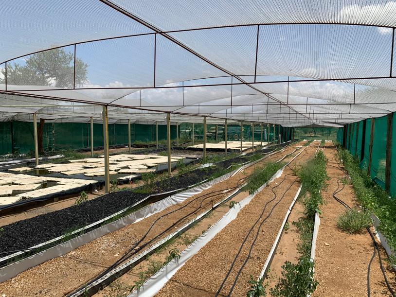 Farm in Okahandja Central For Sale
