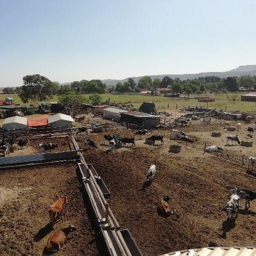 Farm in Heidelberg AH For Sale