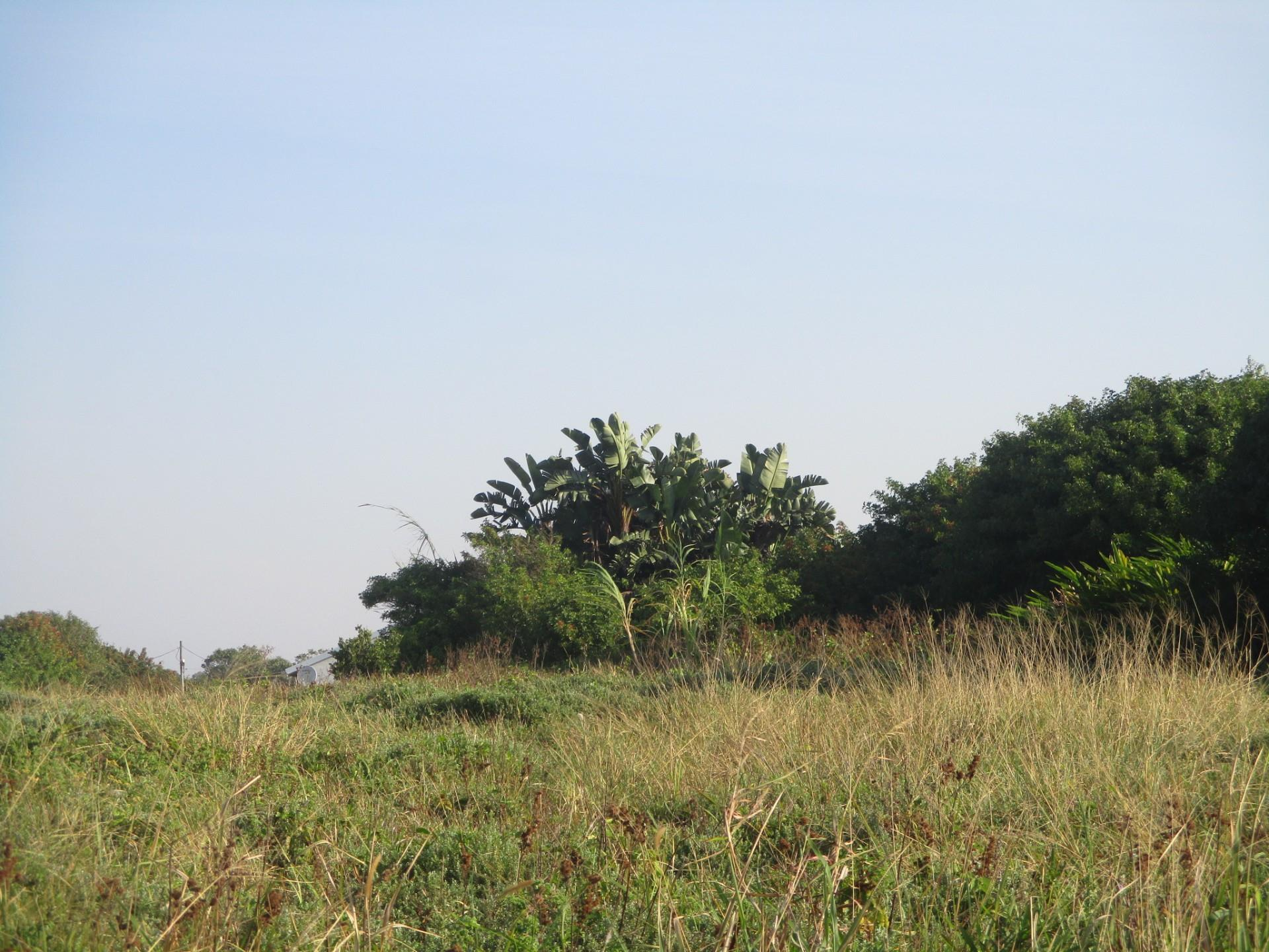 Vacant Land / Plot in Salmon Bay For Sale