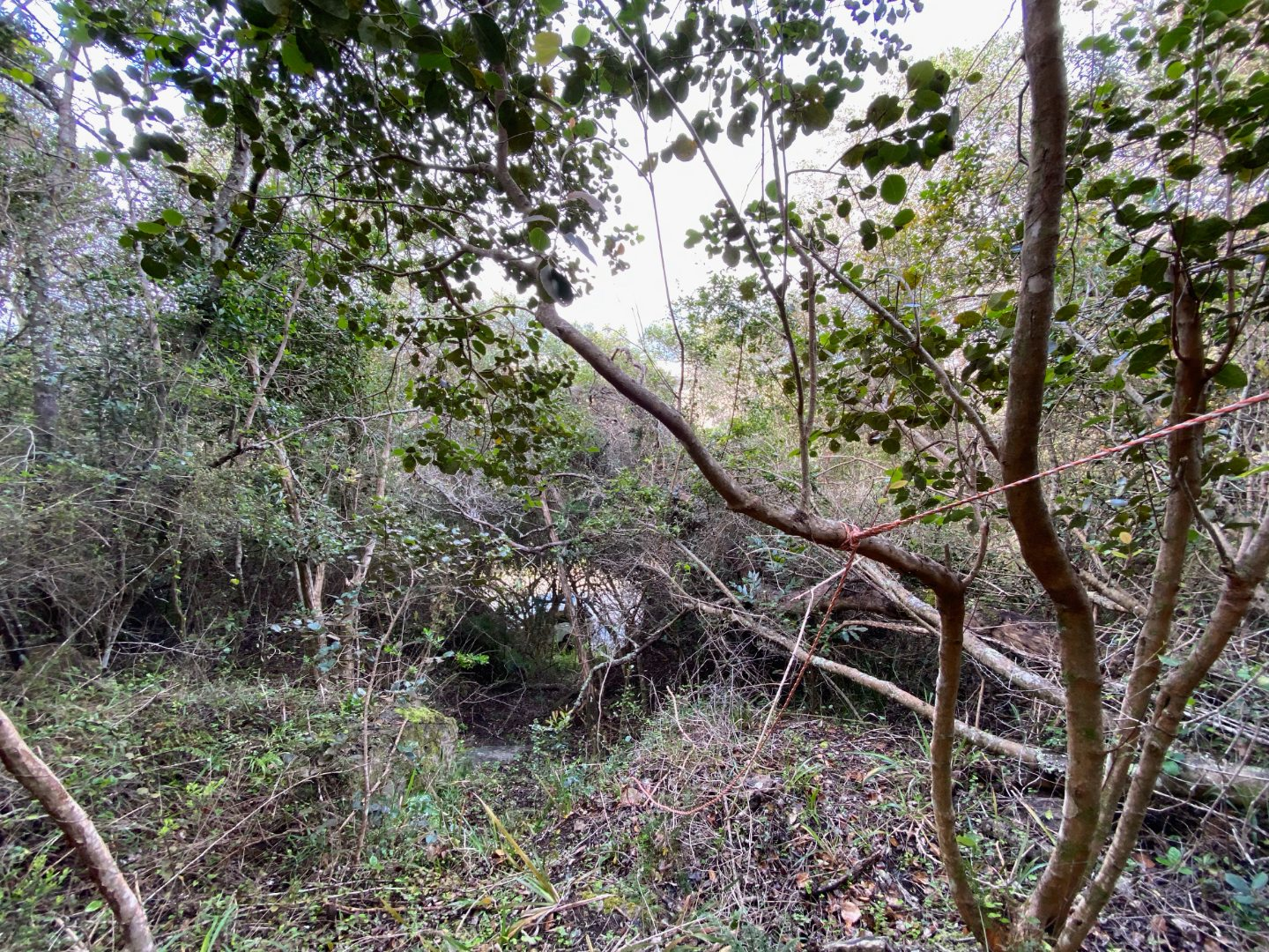 Vacant Land / Plot in Wilderness Central For Sale