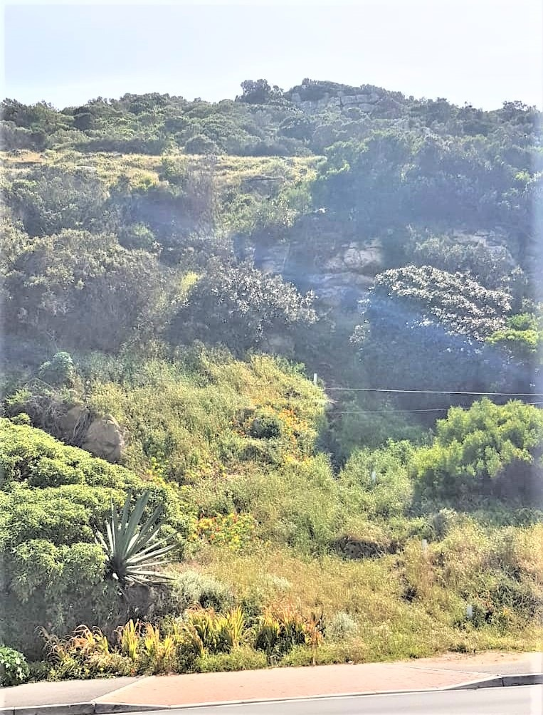 Vacant Land / Plot in Clovelly For Sale
