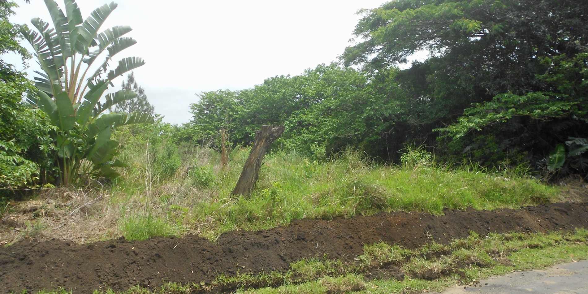 Vacant Land / Plot in Southbroom For Sale
