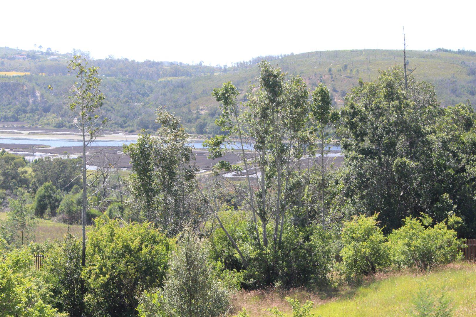 Vacant Land / Plot in Westford Bridge For Sale