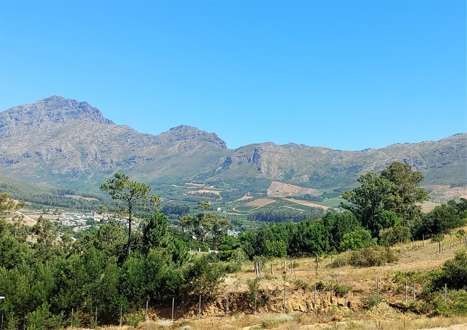 Vacant Land / Plot in Stellenbosch Farms For Sale