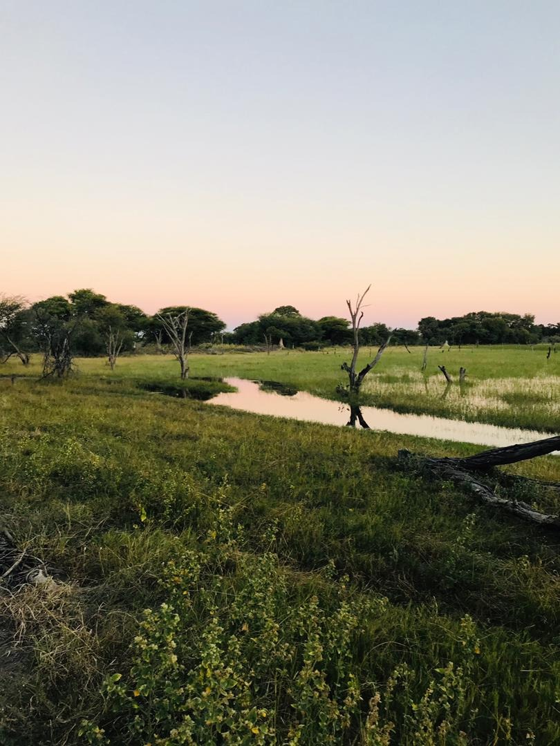 Vacant Land / Plot in Maun Central For Sale