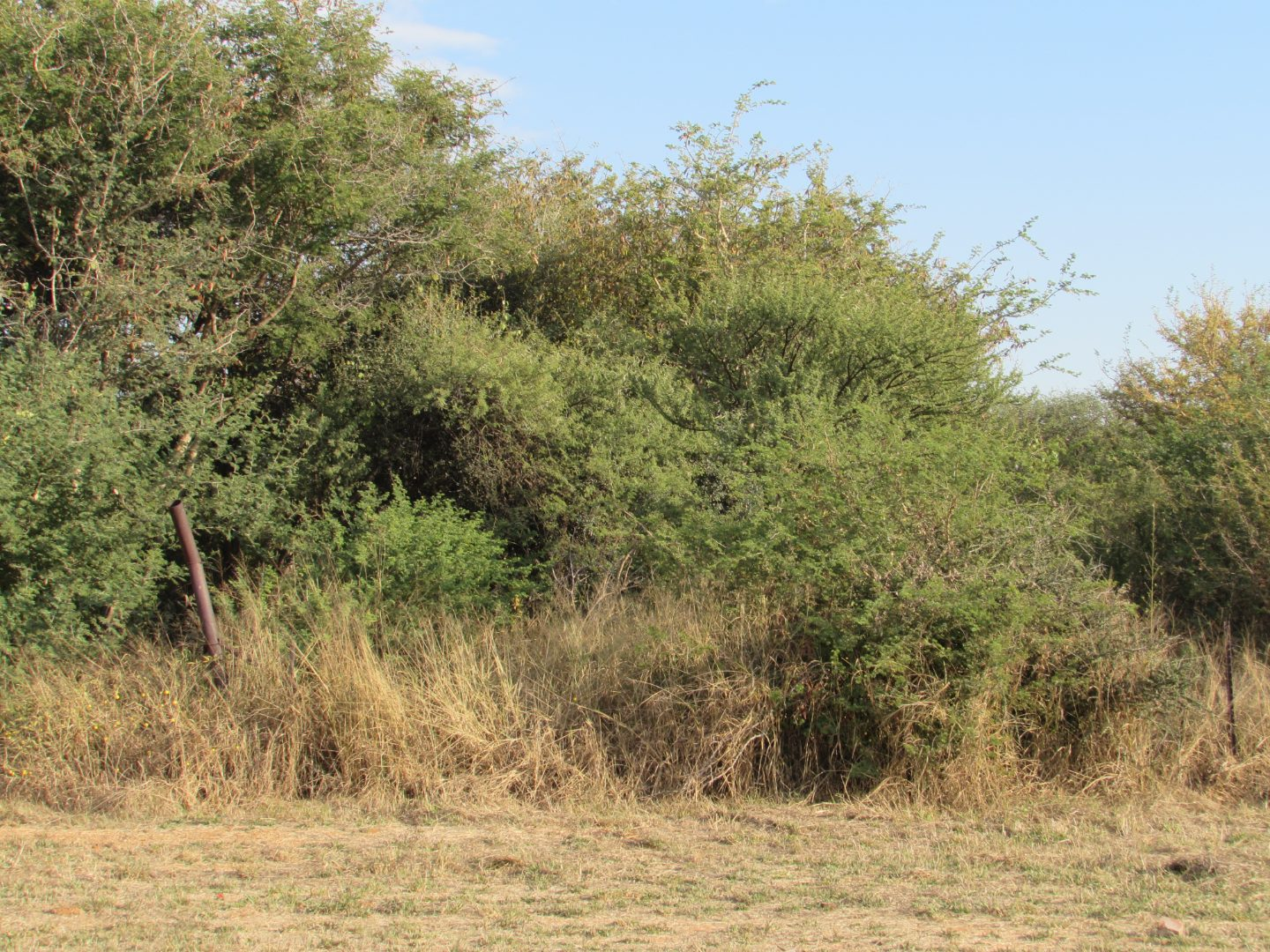 Vacant Land / Plot in Mogoditshane Central For Sale