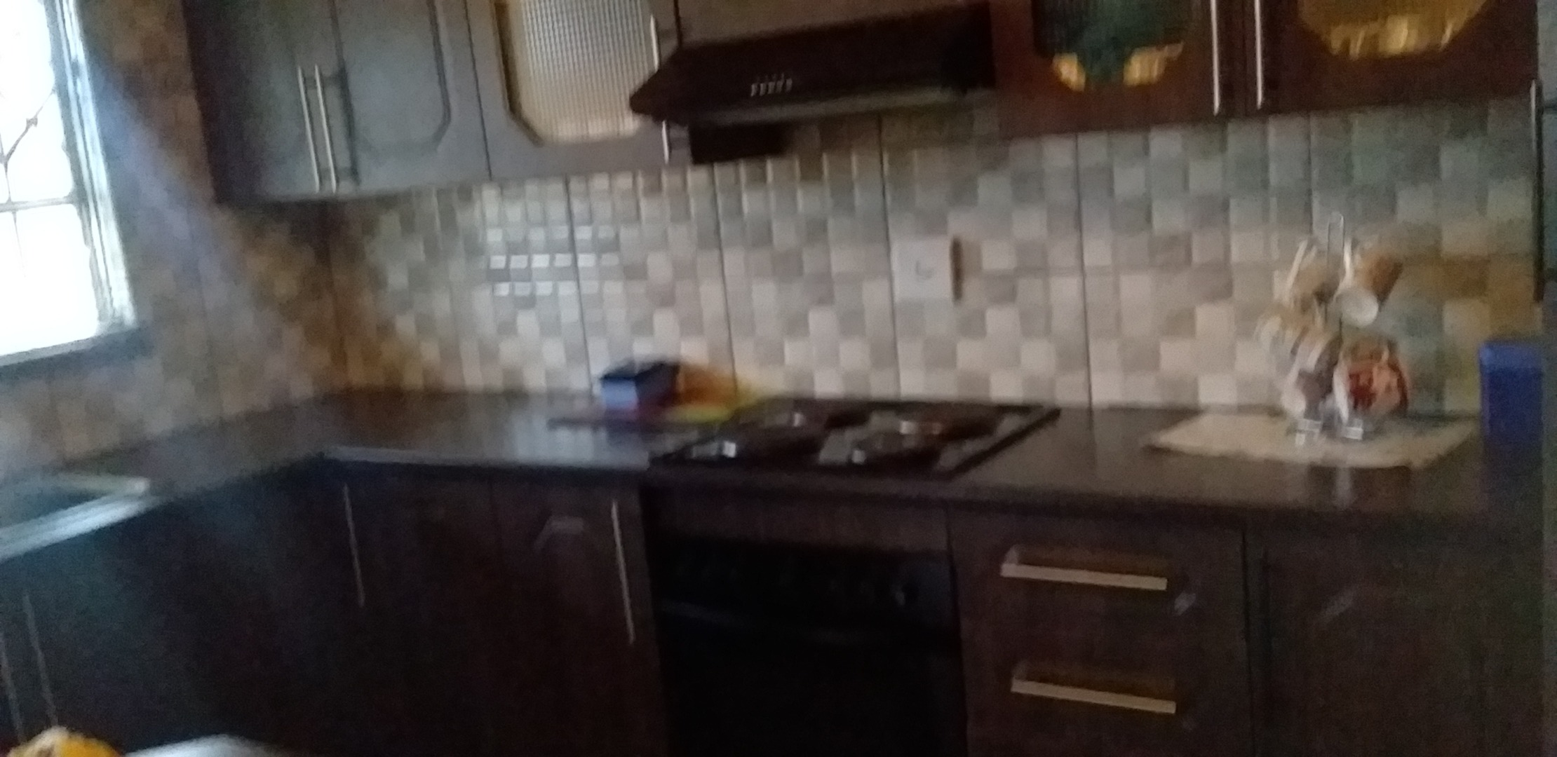 3 Bedroom House For Sale in Elim