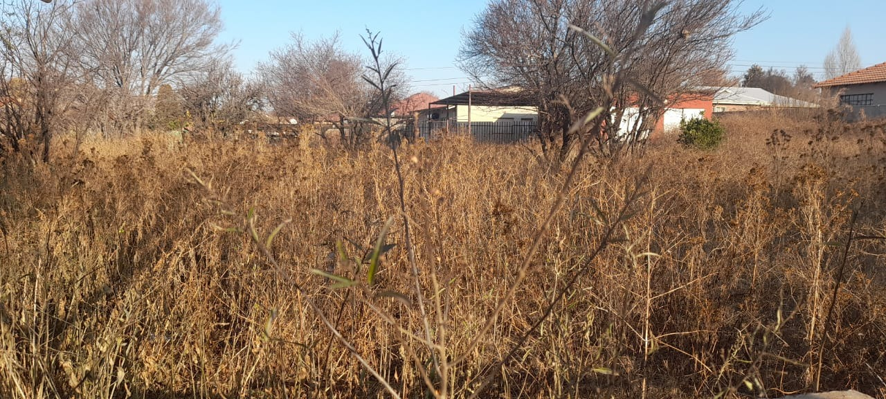 Vacant Land / Plot in Rensburg For Sale