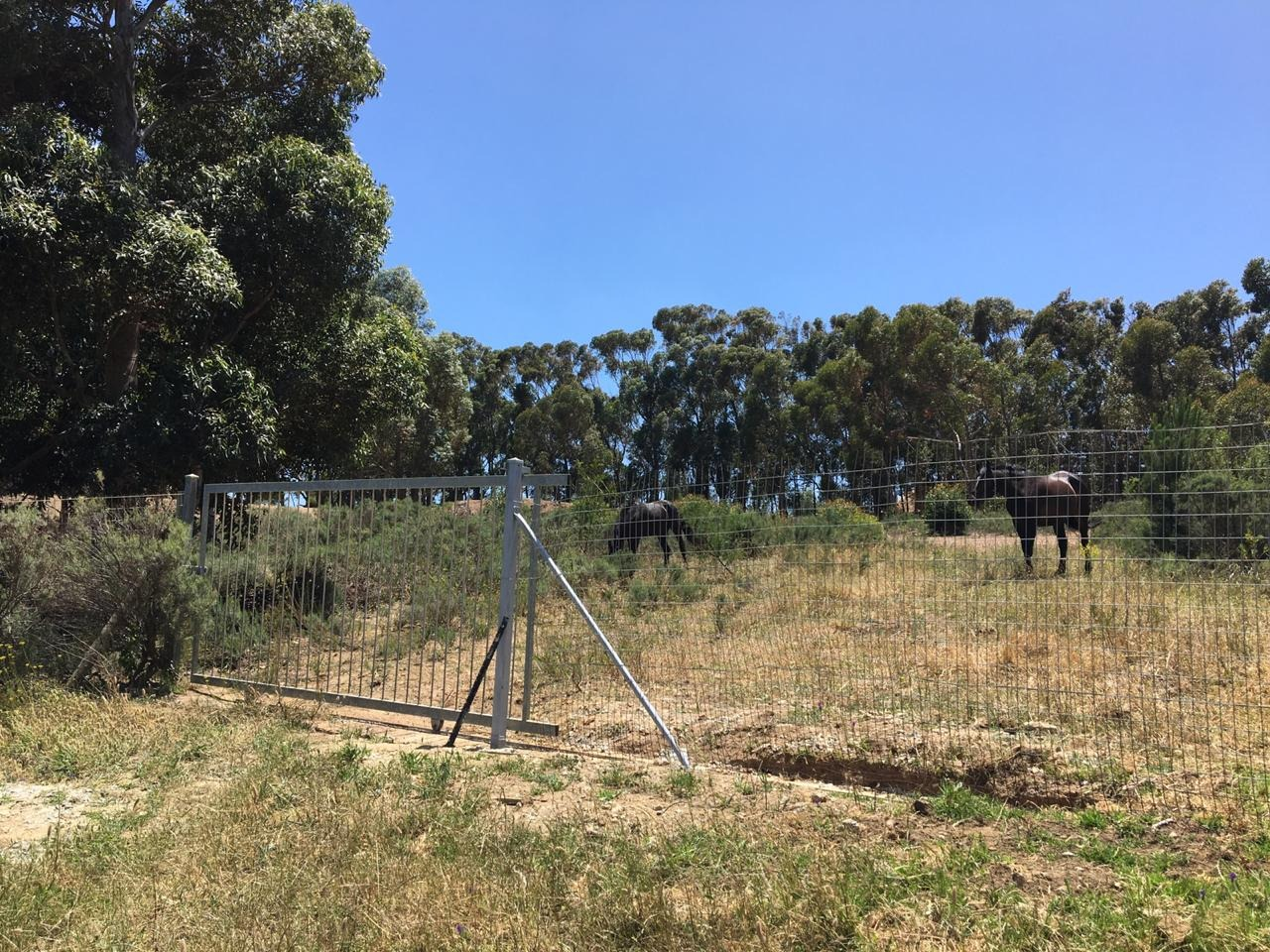 Vacant Land / Plot in Firlands For Sale