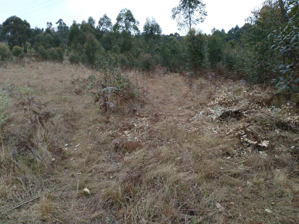 Vacant Land / Plot in Mbabane For Sale