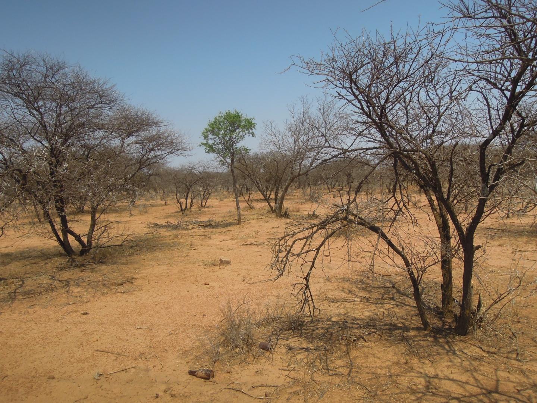 Vacant Land / Plot in Notwane For Sale